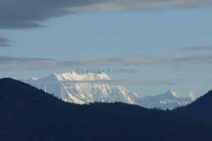 Himalayan snow peaks behind the foothills