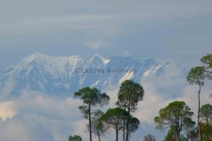 Himalayan range upclose