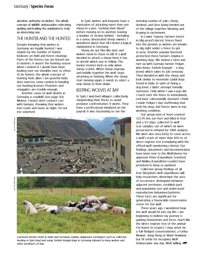 From Lahul Spiti to Lower Saxony. On the wolf Trail pg 62