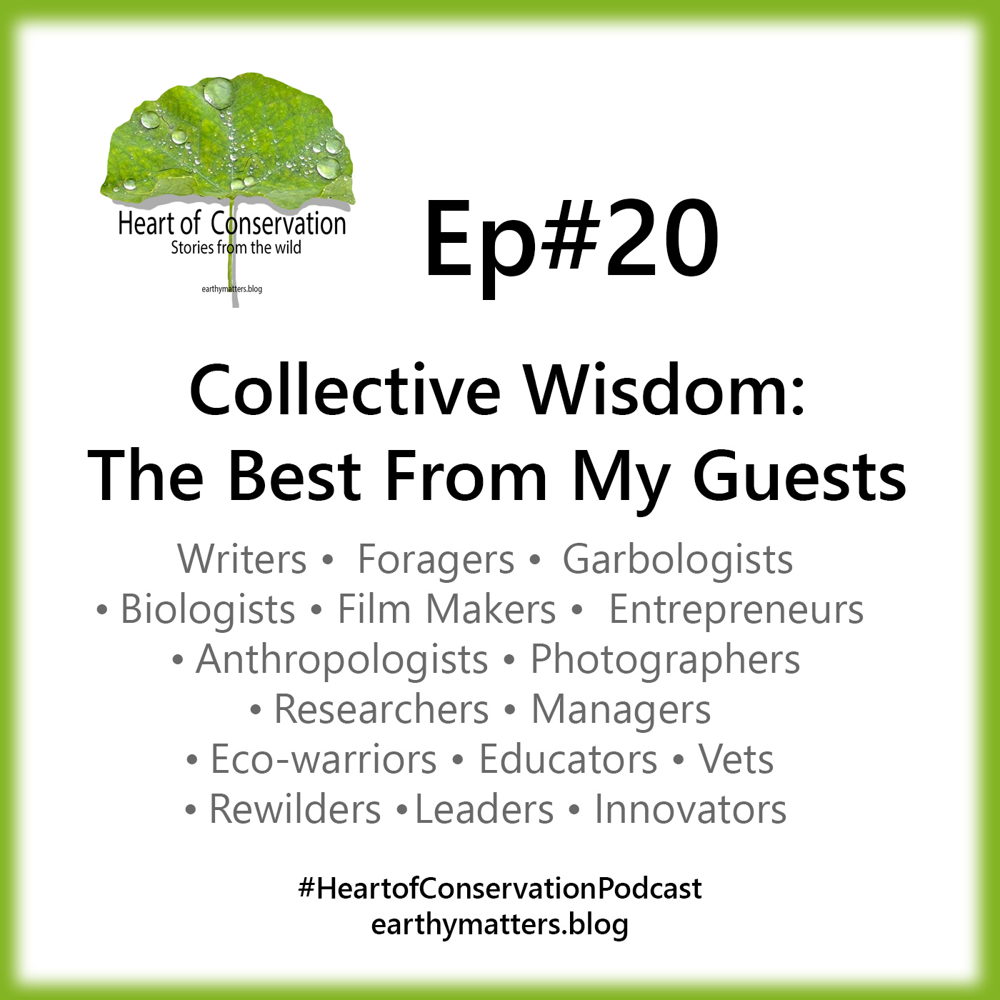 Collective Wisdom:The Best From My Guests Ep#20